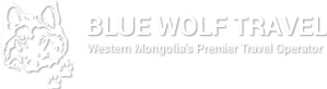 bluewolf-logo